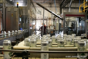 The system in action, canning High Water Brewing Co.'s Cucumber Kolsch